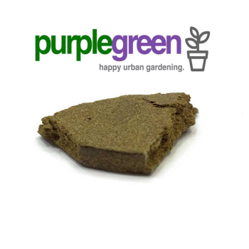 purplegreen CBD Hash Original Linz