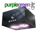 Hazelbeam 2 Growbox Komplettset purplegreen linz